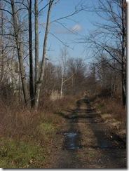 Novwalk_03_trail opening
