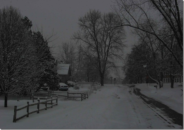 Winter greeting card  01b