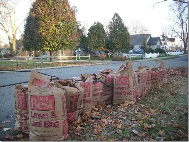 Fifteen bags