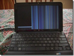 poor little netbook 01