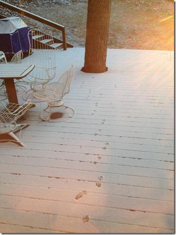 01 26 2013 Melrose snow