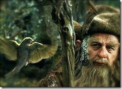 Hobbit Radagast