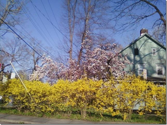 2014 04 28 New Paltz Spring
