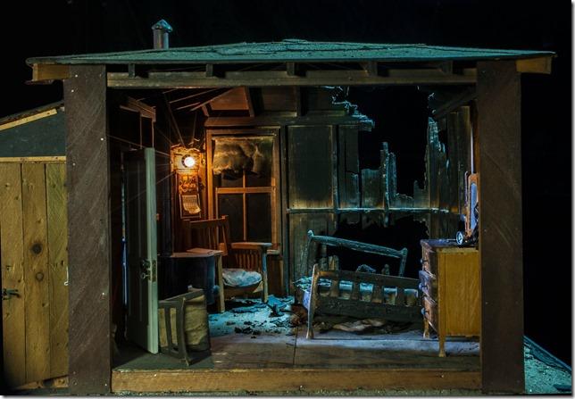 NYT Nushell Series Burned Cabin Baltimore Medical Examiner via Harvard