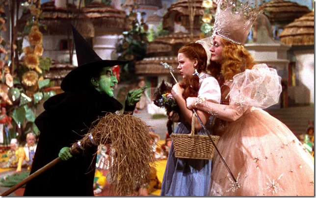 Wizard of Oz Wicked Witch Dorothy Toto Glinda