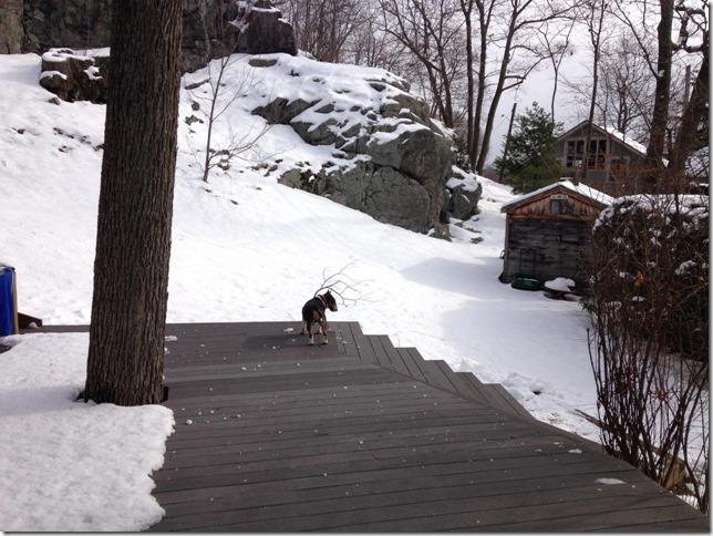2015 01 26 Art indecisive about snow