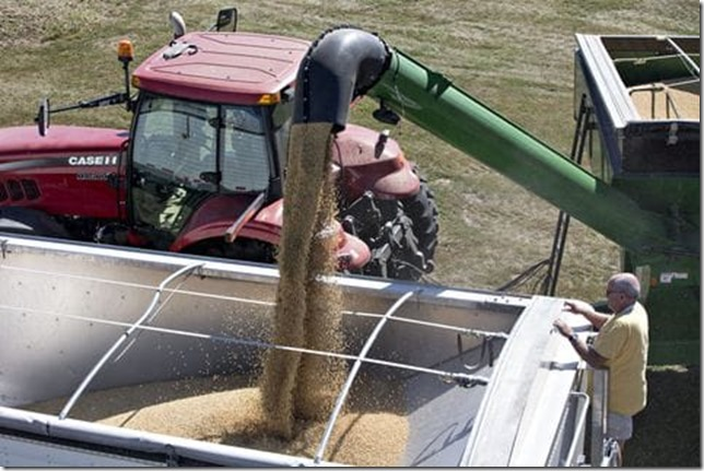 Soybeans Illinois Daniel Acker Bloomberg via WaPo