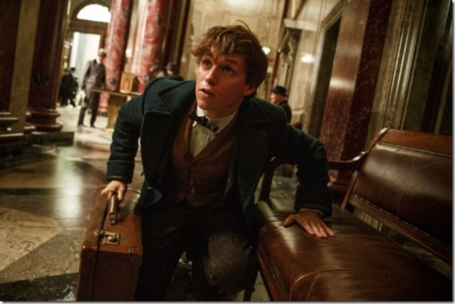 Fantastic Beasts Newt chases beasts on the loose