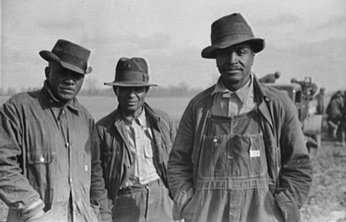 Depression Missouri  Evicted sharecroppers along Highway 60 New Madrid County MO Jan 1939 Arthur Rothstein FSA photo LOC via Southern Spaces