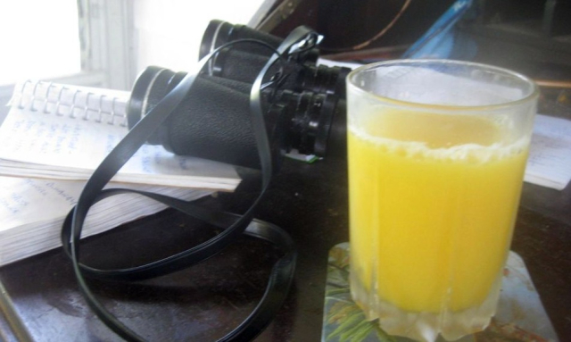 2020 08 24 Niskayuna A Day Without Orange Juice