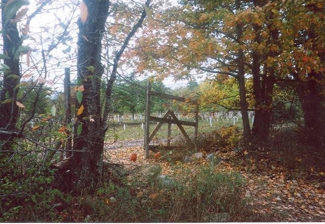 Pumpkin_patch_gate_october_2005
